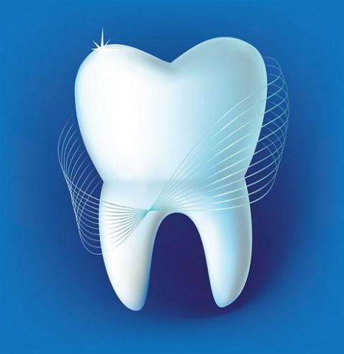Geo Dentist Srl poza 0