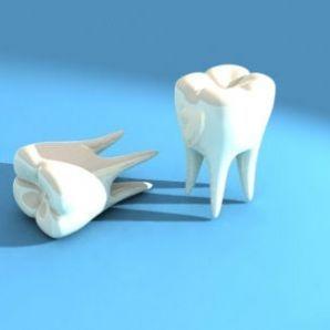 Imagine Studenta caut laborator de tehnica dentara-practica-Iasi