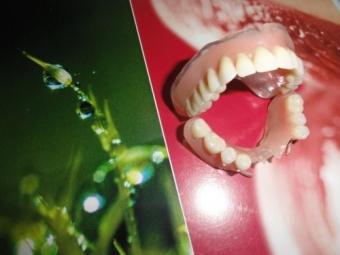 Protezele dentare,utilizare,sfaturi