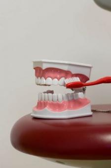 Igiena dentara copii